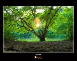 SunTree by waldemarart