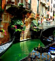 Streets of Venice by Moonbird9