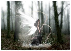 Enchanted Fairy by countocram