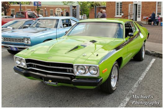 A Sublime Green Road Runner by TheMan268