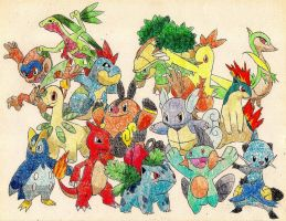 Starter Pokemon 2