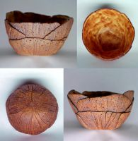 Fall Leaves bowl by metranisome
