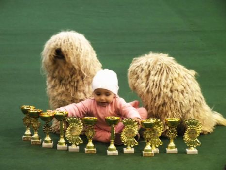 At the dog show by johnpenko