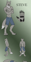 Steve Reference by IchikoWindGryphon
