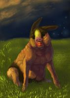 And finally Tepig