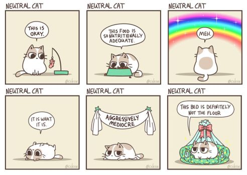 Neutral Cat by celesse