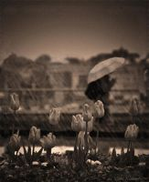 Crying in The Rain by Violet-Kleinert