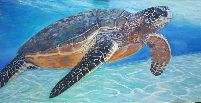 Turtle takes flight by Dennis64