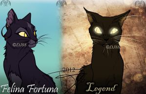 Legend and  Felina by DJ88