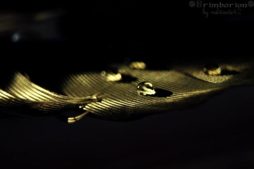 L'or transparant by Militante42