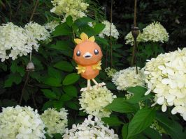 Torchic papercraft by TimBauer92