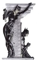 Catwoman Commission by aaronlopresti