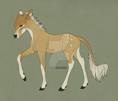 Ciar x Isold Fawn by Ace118