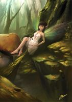 Fairy by magpies7