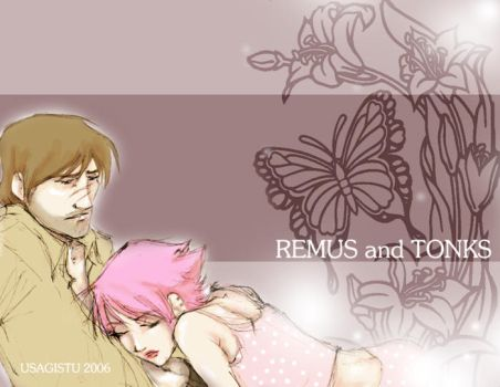 Remus and Tonks by usagistu