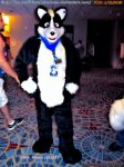 FWA Photo (90/93) Alex the skunk furry by HomeOfBluAndshadows