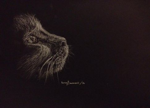 witches cat - black A4 paper and white pencil by 12LucyJ34
