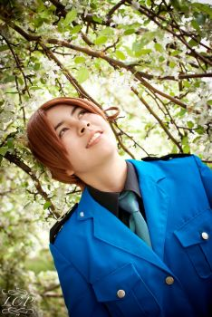 Hetalia: Cutie Italy 3 by LiquidCocaine-Photos