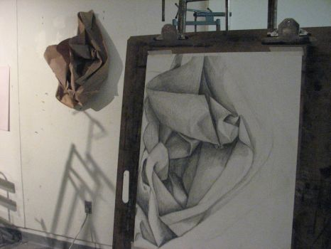 Brown Paper still life WIP by WingedLioness