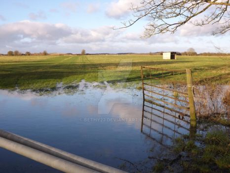 Reflections on flooded field by Bethy23