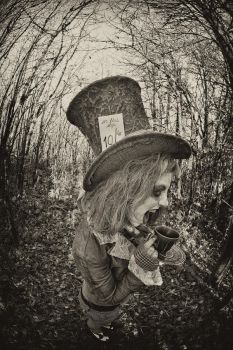 The Rude Hatter 9 by newspin