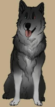 Dog Study #3- Jack by TheWolfLover2003