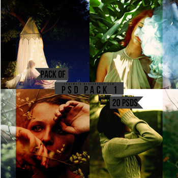 PSD Pack 1-Pack of Twenty by ecnemsia