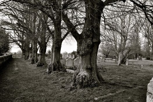 Graveyard in Dunmow by TheMagneticWombat