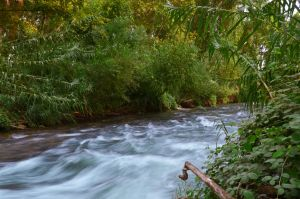 flow by tomkenar