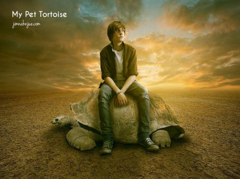 My Pet Tortoise by Jimnah