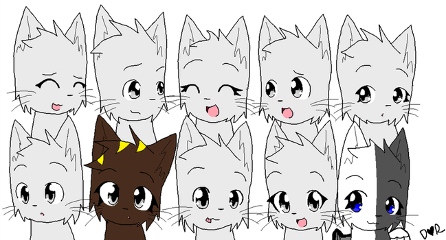 Cat Group Collab by DarkLight-The-Hybrid