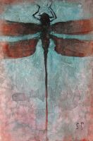 Dragonfly with Red and Blue by SethFitts