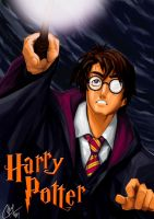 HARRY POTTER by the-hary