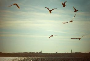 istanbul by bcharles