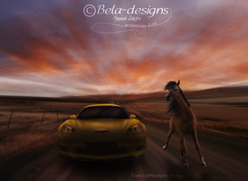 {comm} Horse Power Like No Other by Bela-designs