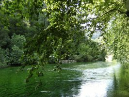 The Springs of France by Dragonheart69