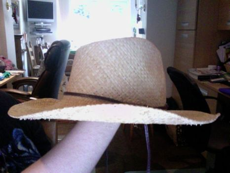 wip Portgas D ace hat start by crayal