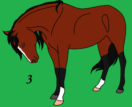 Furry Stable's Tucker: by PokemonGal16