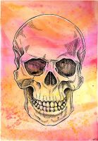 Skull Watercolor by crazy-fae