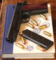 Colt Book by ChillBebop