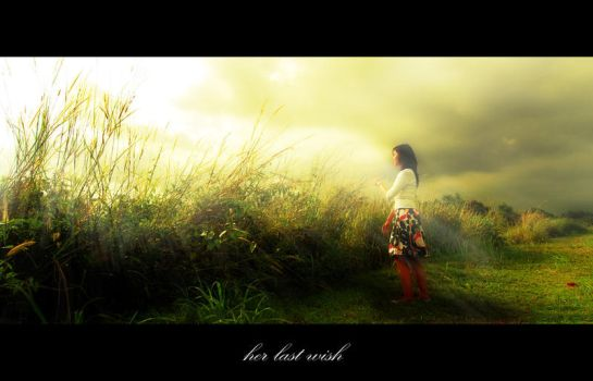 her last wish by luct-angga