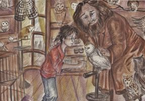 Meeting Hedwig by HogwartsHorror