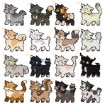 Warrior cats Adopts || Pay to Adopt  / Wta by ThePotato-Queen