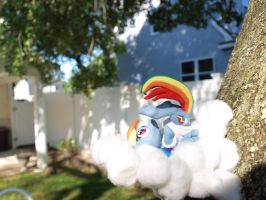 On Cloud Nine 3 by dustysculptures