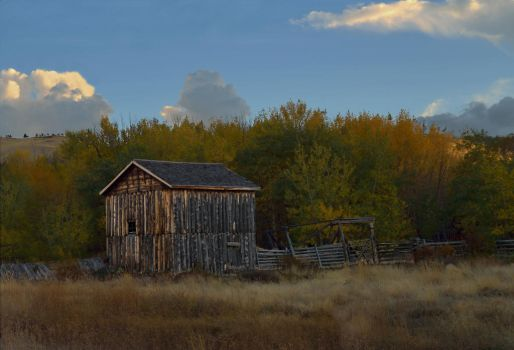 Barn Near Elk Mountain WY by kevoka